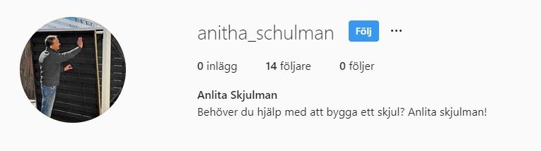 anitha_schulman_instagram
